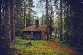 Mediniai namai